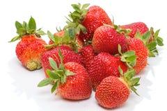 Grote verse aardbeien Stock Foto's