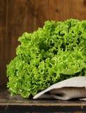 Grote verse organische groene sla Stock Afbeeldingen