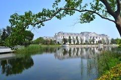 Grote villa Royalty-vrije Stock Fotografie