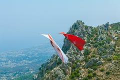 Grote Vlaggen van Noord-Cyprus en Turkije - symbool van beroep Stock Fotografie