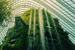 Grote waterval in de wolkenbos van Singapore Royalty-vrije Stock Afbeeldingen