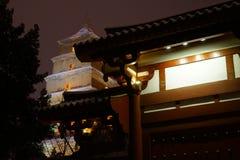 Grote Wilde Ganspagode Xi ` royalty-vrije stock afbeelding