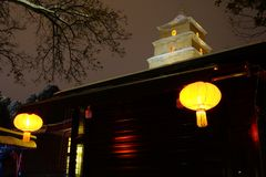 Grote Wilde Ganspagode Xi ` Stock Foto's