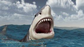 Grote witte haai in het stormachtige overzees Royalty-vrije Stock Foto's