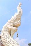 Grote witte koningsnaga in boeddhistische tempel Ubon Thailand Royalty-vrije Stock Afbeeldingen