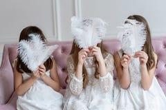 Grote witte veren in plaats daarvan gezichten van meisjes in handen royalty-vrije stock afbeeldingen