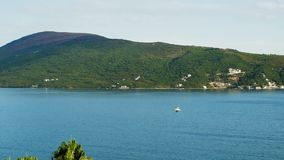 Grote witte Zeemeeuw die in de hemel in de bergen dichtbij het overzees vliegt stock videobeelden