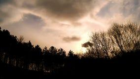 Grote wolken die zich over de bomen bewegen stock video