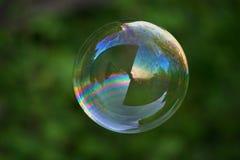 Grote zeepbel op groen Royalty-vrije Stock Foto