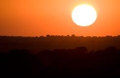 Grote zon Stock Foto's