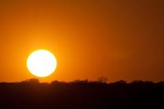 Grote zonschijf bij zonsondergang Royalty-vrije Stock Foto's