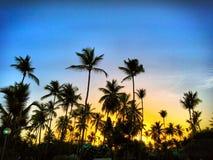 Grote zonsopgang bij paradijs stock afbeeldingen