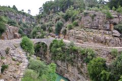 grotesk bro över floden Royaltyfri Foto