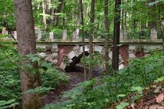 Grotesk bro Royaltyfri Foto