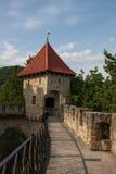 Grotesk slott med träd i Polen arkivbilder