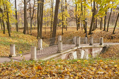 Grotesque bridge in autumn park Stock Image
