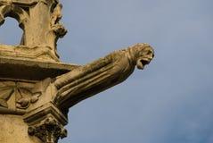Grotesque, Notre Dame fotografia stock libera da diritti
