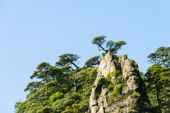 Grotesque peaks thrusts itself towards the sky. This photo was taken in Mt. Sanqingshan.Photo taken on:Oct 21th,2015.Mt. Sanqingshan, located in northeast of Royalty Free Stock Photography