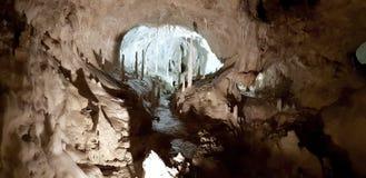 Grotta för Frassassi ` s med stalactities Arkivfoto