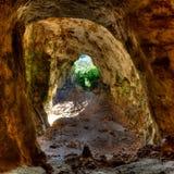 Grotta för Menorca Cova delsColoms duvor i es Mitjorn Arkivfoto