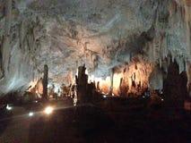Grotta för studie Royaltyfri Bild