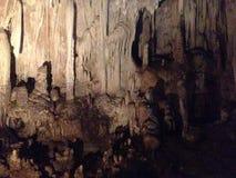 Grotta för studie royaltyfria foton