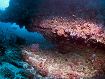 grotta maldives Arkivfoton