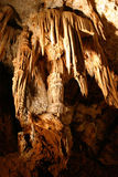 grottaclamouse Royaltyfria Foton