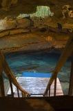 grottafjäder arkivfoto