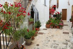 Grottaglie, Italy. Street view with flower pots in Apulia region Stock Photos
