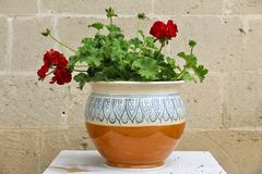 Grottaglie, Italy. Typical local hand made porcelain flowerpot Royalty Free Stock Photo