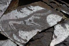 Grottamålningar royaltyfri foto