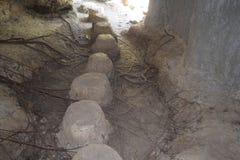 Grottan går vägen Royaltyfri Bild