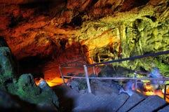 grottapsychro Arkivfoto