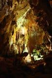 grottastalagmitessten Royaltyfri Foto