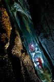 grottatopolnita Royaltyfri Bild