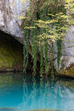grottavatten royaltyfria bilder
