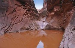 Grotte argentée Photographie stock