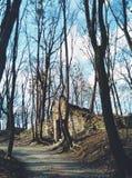 Grotte im botanischen Garten lizenzfreie stockfotos
