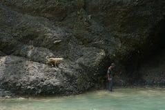 Grottmänniska med hans kompis royaltyfri foto