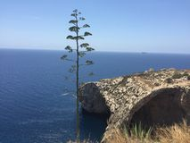 Grotto azul imagem de stock