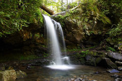 Grotto Falls. In Great Smokey Mountains National Park Stock Photo
