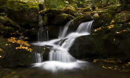 Grotto Falls, Great Smoky Mountains Royalty Free Stock Photos