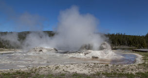 Grotto Geyser erupting Royalty Free Stock Images