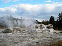 Grotto Geyser in Upper Geyser Basin. Yellowstone National Park, Wyoming, USA Royalty Free Stock Images
