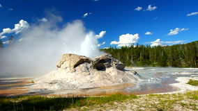 Grotto Geyser Yellowstone National Park stock footage