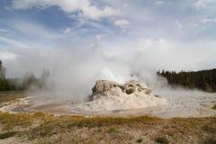 Grotto Geyser in Yellowstone Stock Photo