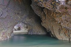 Grotto at low tide, Finistere, Brittany, France Royalty Free Stock Image
