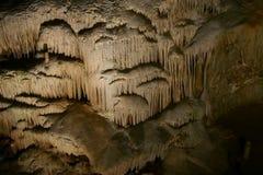 Grottor av Han-sur-Lesse arkivfoton