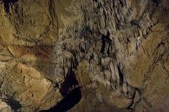 Grottor och grottabildande i kanjonen av floden bredvid Bor royaltyfria bilder